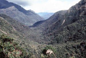 Rio Upano Valley