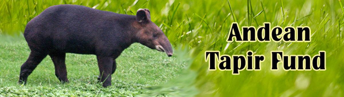 Andean Tapir Fund